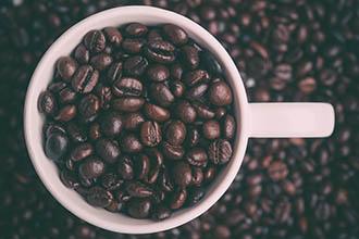 bean-cup
